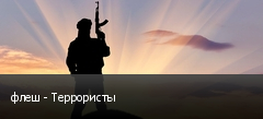 флеш - Террористы