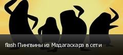 flash Пингвины из Мадагаскара в сети