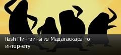 flash Пингвины из Мадагаскара по интернету