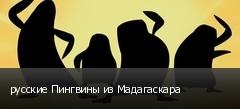 русские Пингвины из Мадагаскара