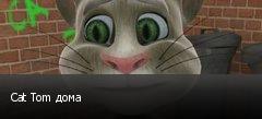 Cat Tom дома