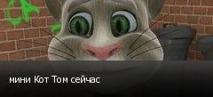 мини Кот Том сейчас