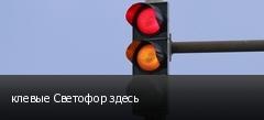 клевые Светофор здесь