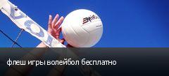 флеш игры волейбол бесплатно