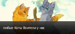 любые Коты Воители у нас