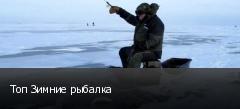 Топ Зимние рыбалка
