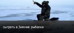 сыграть в Зимние рыбалка