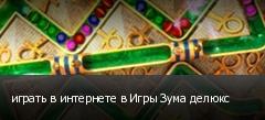 играть в интернете в Игры Зума делюкс